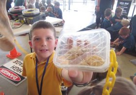 Harmony Week Incursion
